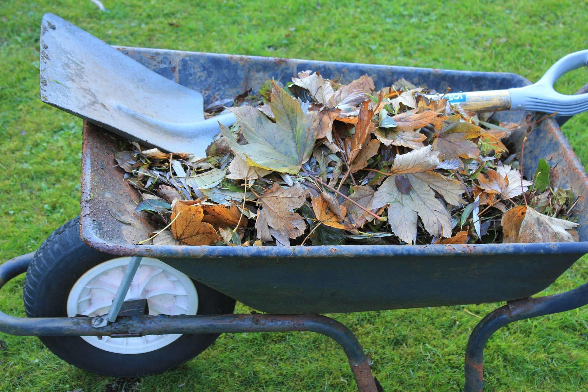 Garden waste collections have resumed